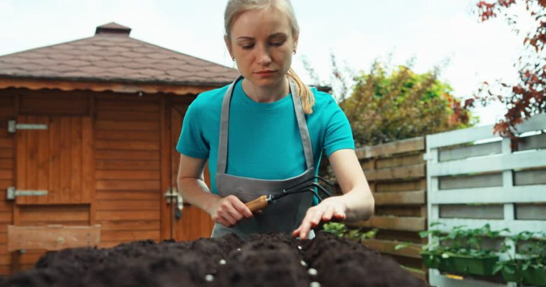 woman planting bean seeds2