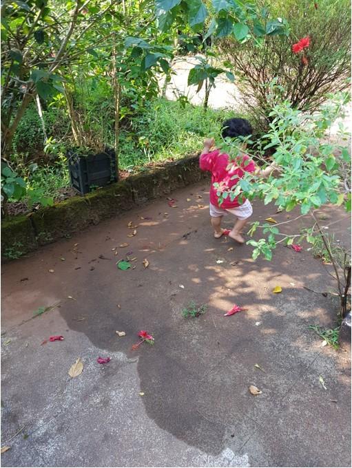 lakshmi-bhat