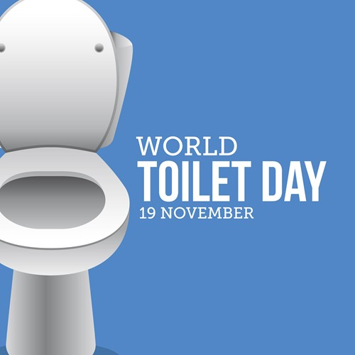gettyimages-873747486_world-toilet-day-usa